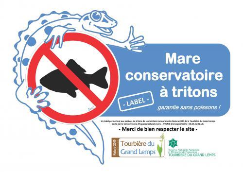 Des mares sans poissons soci t herp tologique de for Poisson pour mare